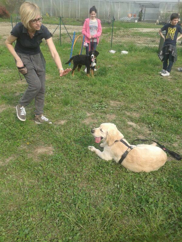 resta axel puppy aprile 2014.jpg